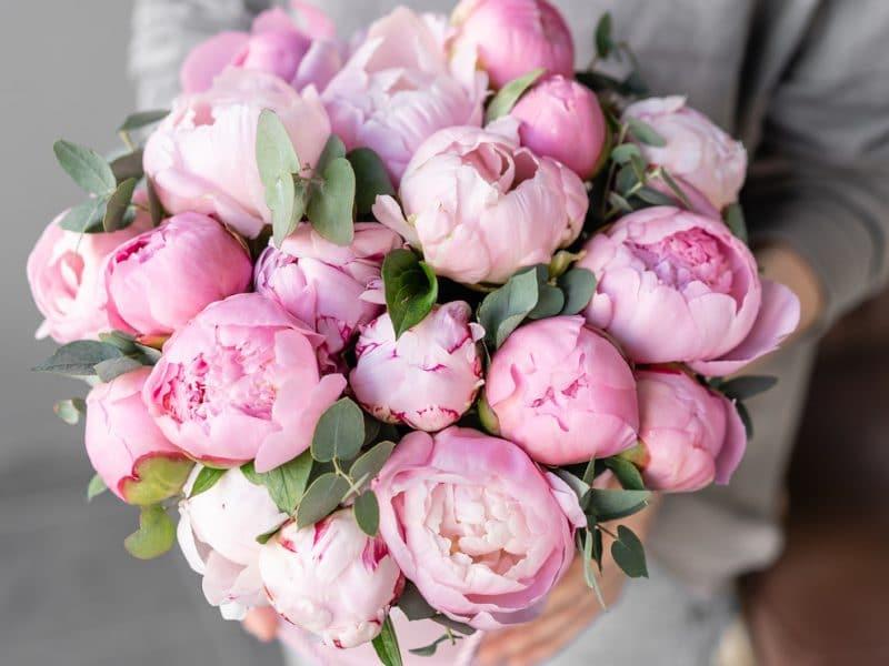 En Kaliteli Çiçekleri Sevdiklerinize Ulaştırıyoruz